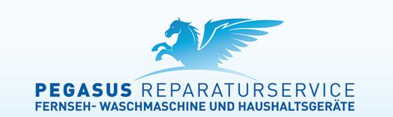 PEGASUS REPARATURSERVICE BERLIN